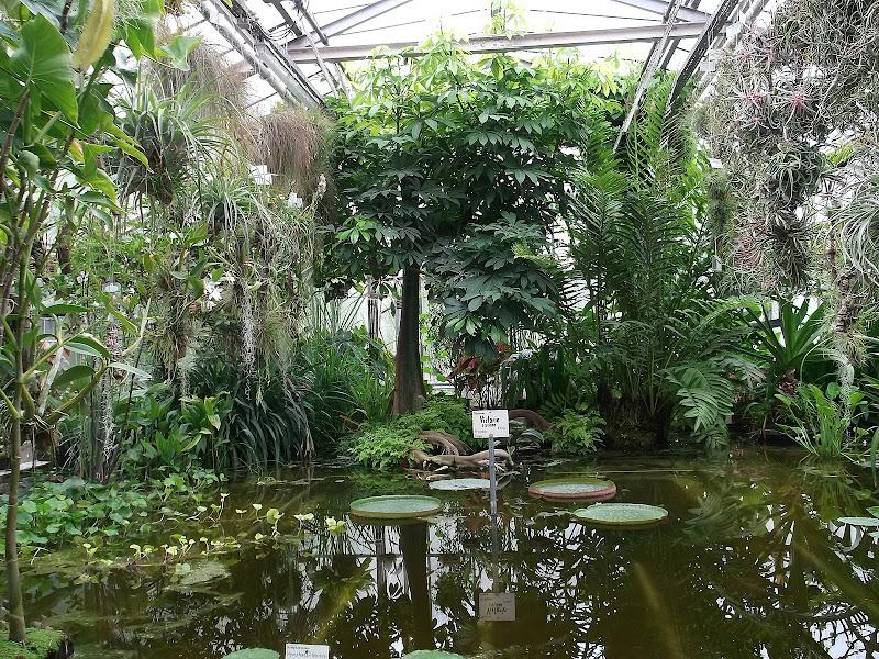 Botanischer Garten Göttingen